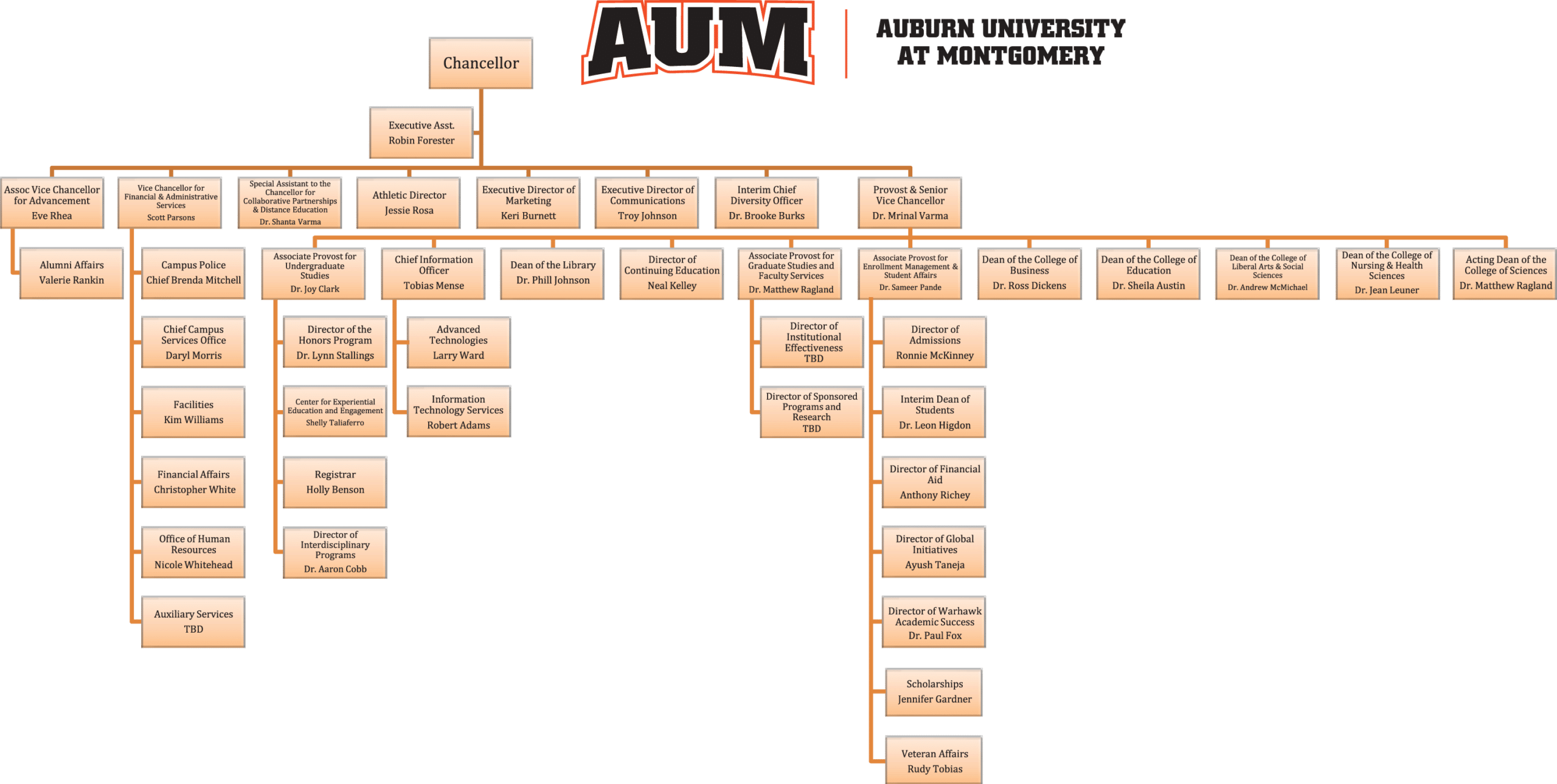 AUM-Org-Chart-Chancellor-and-Provost-2 copy